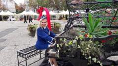 (GALERIE FOTO) FESTIVALUL CASTANELOR-Deschiderea oficiala la EXPO FLORA Baia Mare