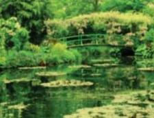 """""""Lacul cu nuferi"""" al lui Monet, vandut cu 50 de milioane de euro"""