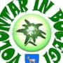"""""""VOLUNTAR IN BUCEGI"""", un program pentru educatia civica a elevilor"""
