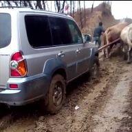 (Video) Buzau: Femeie operata, dusa la medic cu o masina trasa de boi. Primarul promite sa repare drumul, dupa ce imaginile s-au viralizat