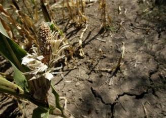 AP: Balcanii, loviti de cea mai grava seceta din ultimele decenii