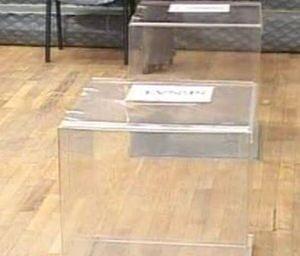 Alegeri parlamentare Vot fara probleme in diaspora
