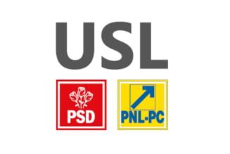 Alegeri parlamentare 2012: Candidati cu cantec pentru Diaspora din partea USL