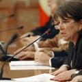 Alegeri parlamentare 2012: Nicolai: Nu exclud o implicare a serviciilor in campanie