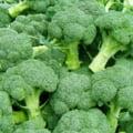 Alimentul zilei: Broccoli - calorii si valori nutritionale