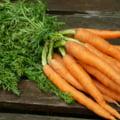 Alimentul zilei: Morcovul - calorii si valori nutritionale