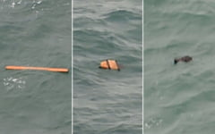 Avion AirAsia prabusit: Bucati din aeronava, gasite pe fundul marii