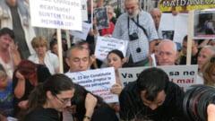 BBC: Campanie romaneasca pentru uciderea cainilor vagabonzi