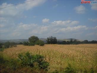 Bloomberg: Pretul mic al terenurilor agricole atrage investitorii in Romania