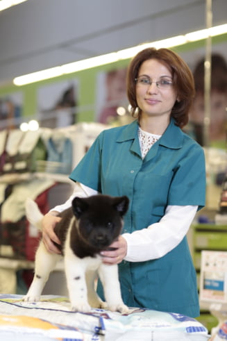 Coltul animalelor: Cum le transportam - cat costa un bilet de tren pentru caine