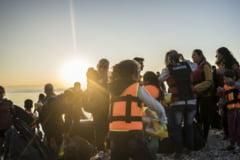 Criza imigrantilor: Ministerul Educatiei cauta locuri in camine, Parlamentul face inca o comisie