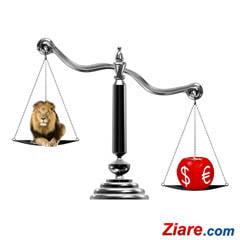 Curs euro - leu: Euro, dolarul si aurul castiga teren in fata leului