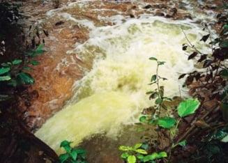 Dezbatere Ziare.com - Rosia Montana (II): O bomba ecologica
