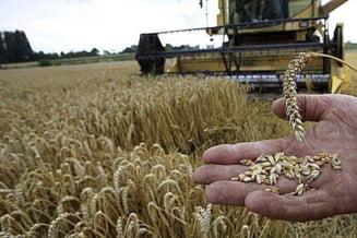 """Financial Times: Romania, """"tinta"""" investitorilor straini in agricultura"""