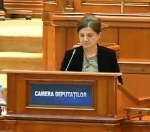 Fotografia zilei: Chiul in masa la Camera Deputatilor