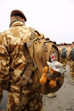Fotografia zilei: Tedi, ursuletul roman plecat in misiune in Afganistan