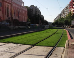 Fotografia zilei: Tramvaiul care circula pe ... gazon