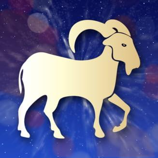 Horoscop 2014 - Capricorn