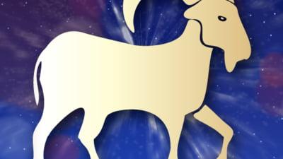 Horoscop 2016 - Capricorn