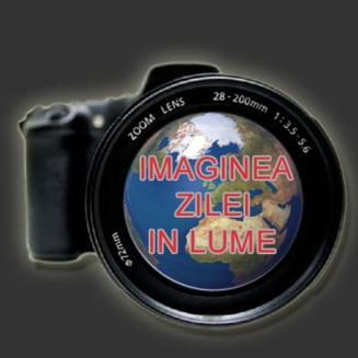 Imaginea zilei in lume: Cea mai frumoasa fotografie din natura, in 2011