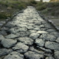 In pas de legenda: Drumul Domnului de Roua, de la Sucidava spre curtile lui Ler imparat
