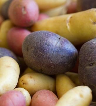 Legumele toamnei: Cartofii, fructele pamantului
