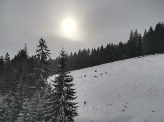 Meteo: E cald pentru ianuarie, dar avem cod galben de ceata si polei in Bucuresti si 29 de judete
