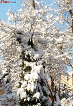Meteo: Iarna in toata regula, cu zapada si temperaturi de minus 17 grade