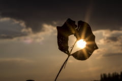 Meteo: Inca o zi cu temperaturi de iarna, apoi se intoarce soarele
