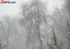 Meteo: Scoateti cojoacele din dulap! Frig si primele ninsori - prognoza pe 2 saptamani