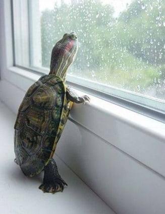 Meteo: Se strica vremea, vin ploile