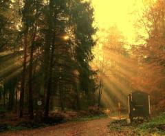 Meteo: Toamna mohorata dimineata, insorita dupa-amiaza