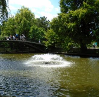 Meteo: Ultimul weekend de vara se anunta cald si placut