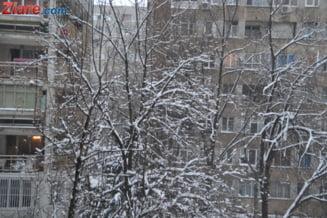 Meteo: Vreme deosebit de rece in toata tara. In Bucuresti au cazut primii fulgi de nea