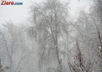 Meteo: Alegeri sub cod galben de ninsoare si viscol