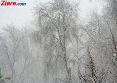 Meteo: De miercuri vin ninsorile si maximele scad sub 0 grade