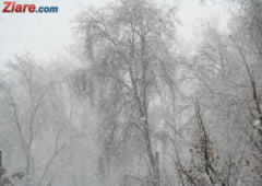 Meteo: Ger, ninsori si viscol in toata tara