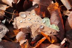 Meteo: Inca doua zile de frig si ploaie