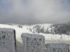 Meteo: Inceput de februarie cu 18 grade in termometre