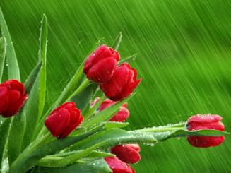 Meteo: Prima zi de Paste vine cu ploi, tunete si vant in rafale
