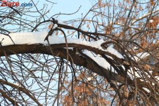 Meteo: Un nou val de aer rece intra in Romania