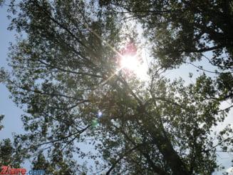 Meteo: Urmeaza zile din ce in ce mai calde