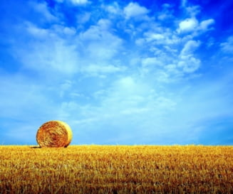Meteo: Zi de vara pana-n toamna - vremea in urmatoarele 3 luni