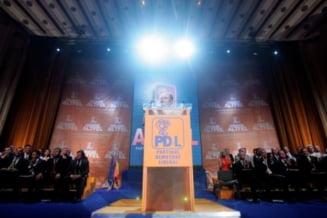 Opinii: Cum isi voteaza PD-L motiunea