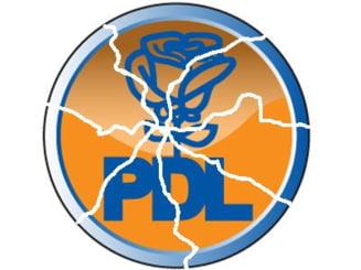 Opinii: Cum se va salva PD-L