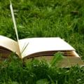Opinii: Legea Educatiei, privita de la firul ierbii