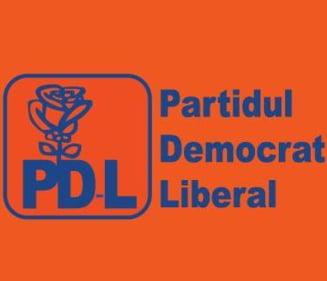 Opinii: Sindromul partidului mare