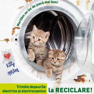 """Patrula de reciclare: Ce contin si cat de periculoase sunt aparatele """"de aruncat"""""""