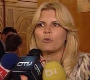 Remanierea Guvernului - Udrea: Sunt oameni care vor face fata cu brio atributiilor