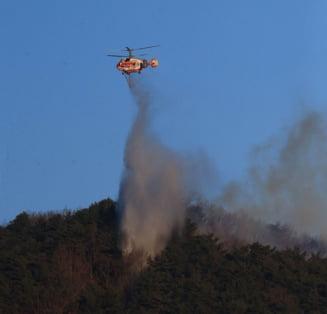 RescEU: A fost lansata prima flota europeana de aeronave pentru combaterea incendiilor